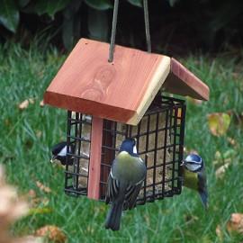 bien nourrir les oiseaux du jardin gamm vert. Black Bedroom Furniture Sets. Home Design Ideas