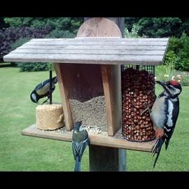 mangeoire murale pour oiseaux restaurant plantes et jardins. Black Bedroom Furniture Sets. Home Design Ideas