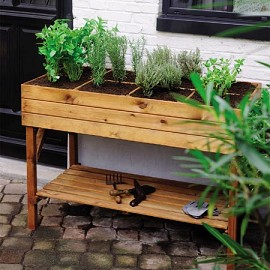 carr potager sur lev bois trait gariguette plantes et jardins. Black Bedroom Furniture Sets. Home Design Ideas