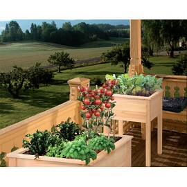 bac potager de balcon en acacia 61x56x85 cm cyprus plantes et jardins. Black Bedroom Furniture Sets. Home Design Ideas