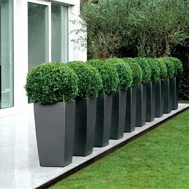 Pot lechuza cubico premium l30 h56 cm anthracite plantes - Amenager devant sa maison ...