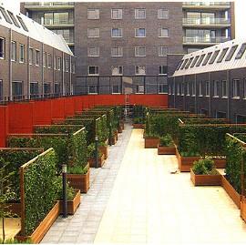 Haie de lierre 39 woerner 39 mobilane en jardini re hauteur for Jardiniere hauteur 1 metre