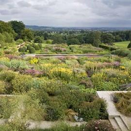 Le nouveau jardin anglais plantes et jardins - Plantes jardin anglais ...