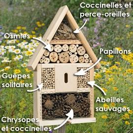 La maison des insectes plantes et jardins - Insecte de bois maison ...