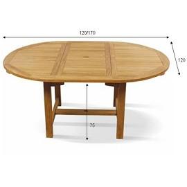 Salon teck table octogonale rallonge 120 170 cm 4 for Petite table a rallonge