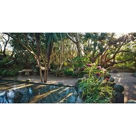 Vauville le jardin du voyageur plantes et jardins for Destockage plantes jardin