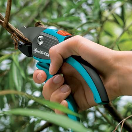 Le sécateur coupe les plus fines branches