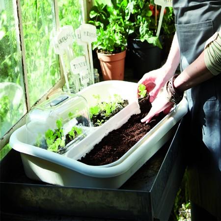 Un Kit de culture pour semer vos légumes primeurs