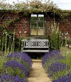 Parfumez votre jardin avec de la lavande