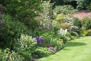 Chez vous le charme d 39 un jardin l 39 anglaise dossiers for Jardin anglais mixed border