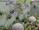 Alternez plantes grimpantes et potées fleuries