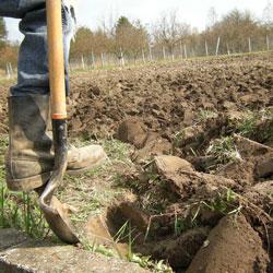Aérer votre terre argileuse