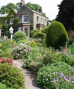 Les Anglais les ont adopté ! Photo prise dans un jardin privé - Endon