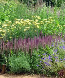 tendance 14 recettes pour un jardin naturaliste gamm vert. Black Bedroom Furniture Sets. Home Design Ideas