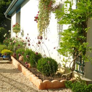 Comment choisir ses plantes de jardin for Choisir plantes jardin