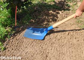 Tassez le sol pour mettre en contact les graines avec la terre