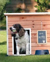 Retrouvez dans le catalogue nos niches pour chien