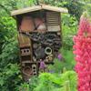 Tout sur les hôtels à insectes pour bien accueillir les auxiliaires du jardinier