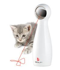 Le laser, un nouveau jeu pour le chat