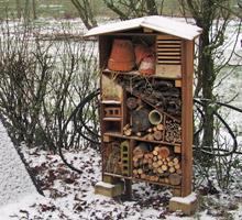 Installez un hôtel à insectes dans votre jardin