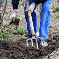 La fourche bêche décompacte la terre et aide au désherbage sans casser les racines