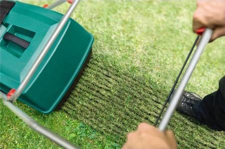 Scarifier la pelouse élimine la mousse et aère le gazon