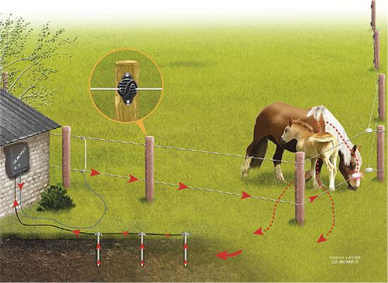 Des impulsions circulent dans les clôtures électriques