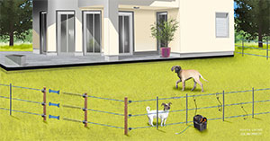 La clôture électrique pour les chiens