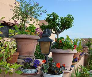 Regroupez les pots dans un coin du balcon