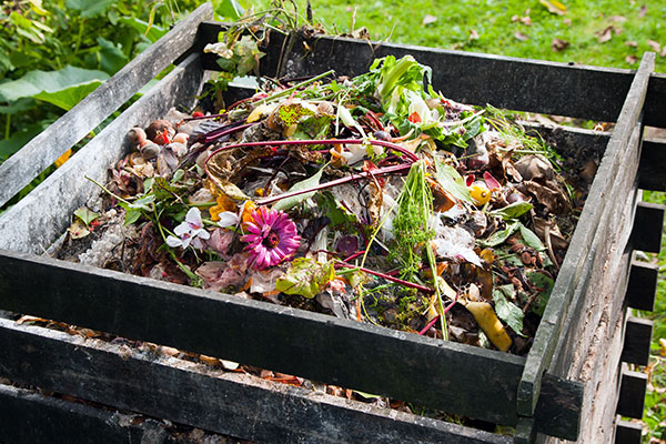 Le compost est un élément important du jardin biologique