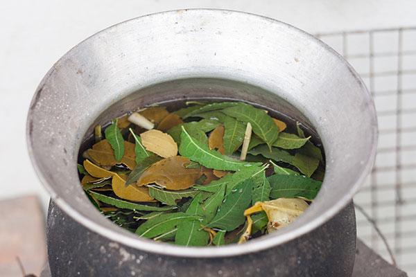 Une décoction est un mélange d'eau et de plantes