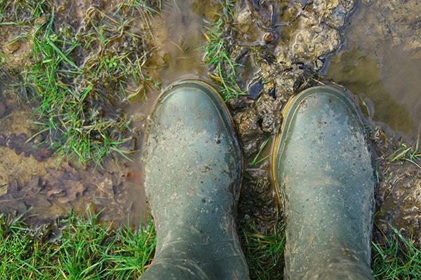 Les sols imperméables n'absorbent pas l'eau