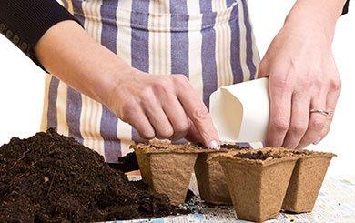 jach re fleurie j 39 am nage mon talus plantes et jardins. Black Bedroom Furniture Sets. Home Design Ideas