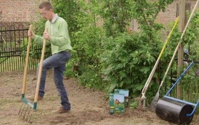 gazon fleuri suisse bhs 500g plantes et jardins. Black Bedroom Furniture Sets. Home Design Ideas