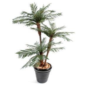 Palmier 3 Troncs, 1m60 (tronc en fibre de verre, feuillage artificiel) + pot classique (Chamaerops)