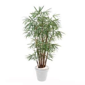 Palmier Raphis Lady 1m80 (tronc naturel, feuillage artificiel) ()