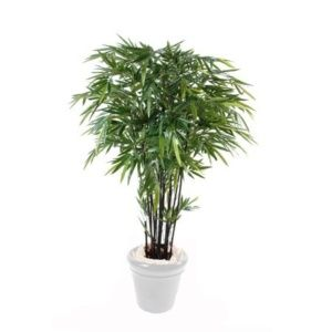 Bambou noir semi-artificiel 2m10