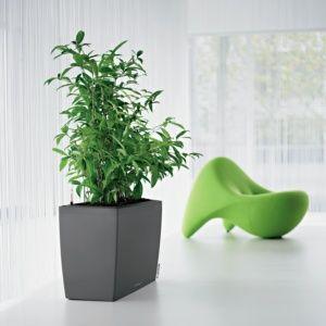 Jardinière Lechuza Cararo Premium L75 H43 cm anthracite