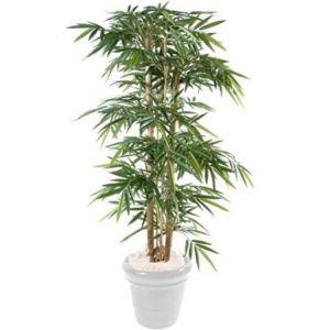 Bambou semi-artificiel grosses cannes H150cm