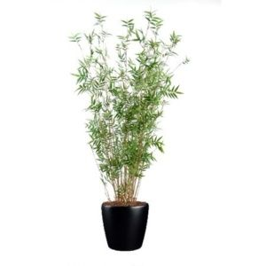Bambou oriental multi-chaumes (tronc naturel, feuillage artificiel) 160cm dans pot Lechuza noir