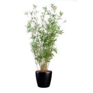 Bambou oriental multi-chaumes (tronc naturel, feuillage artificiel) 190cm, dans pot Lechuza noir