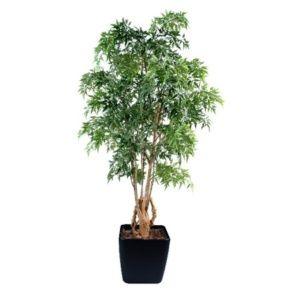 Aralia Ming NitidaTronc noueux  H 180cm (tronc naturel, feuillage artificiel) dans pot Lechuza noir