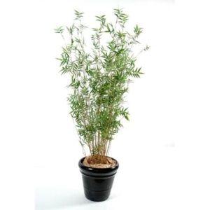Bambou oriental multi-chaumes (tronc naturel, feuillage artificiel) hauteur 130cm + pot classique