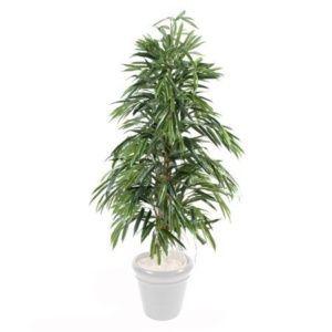 Ficus Alii (feuillage artificiel) 1m50