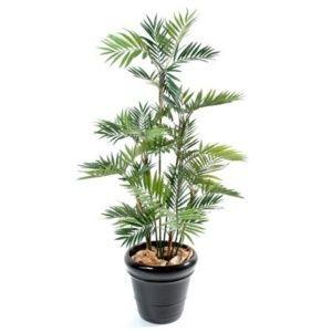 Palmier Parlour 11 chaumes 150 cm  (tronc naturel, feuillage artificiel) + pot classique ()