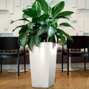 Pot Lechuza Cubico Premium L30 H56 cm blanc