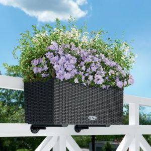 Pot de fleurs extérieur résine granit, incassable résistant aux intempéries, réservoir d'eau intégré Plantes et Jardins – Jardinerie en ligne