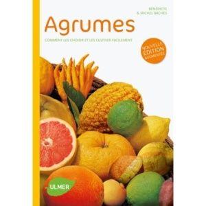 Agrumes : Comment les choisir et les cultiver facilement