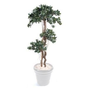 Ficus Panda (tronc naturel, feuillage artificiel) hauteur 180cm + pot classique