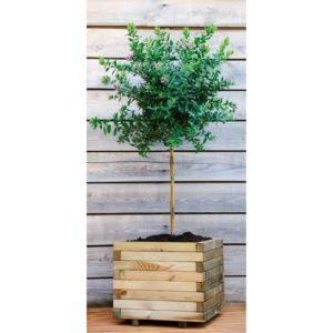 Bac à fleurs en bois traité L80 H60 cm Stockholm